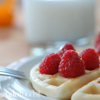 Crispy Gluten Free White Rice Flour Waffles